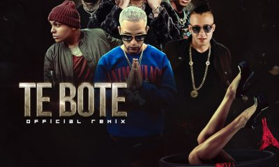 Te Bote Official Remix