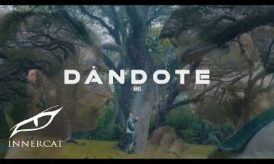 Sartiboy y Lary Over Dandote Remix Official Video