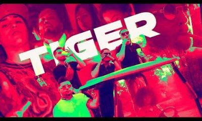 Gaviria Pablo Chill E Y Brray Tiger Official Video